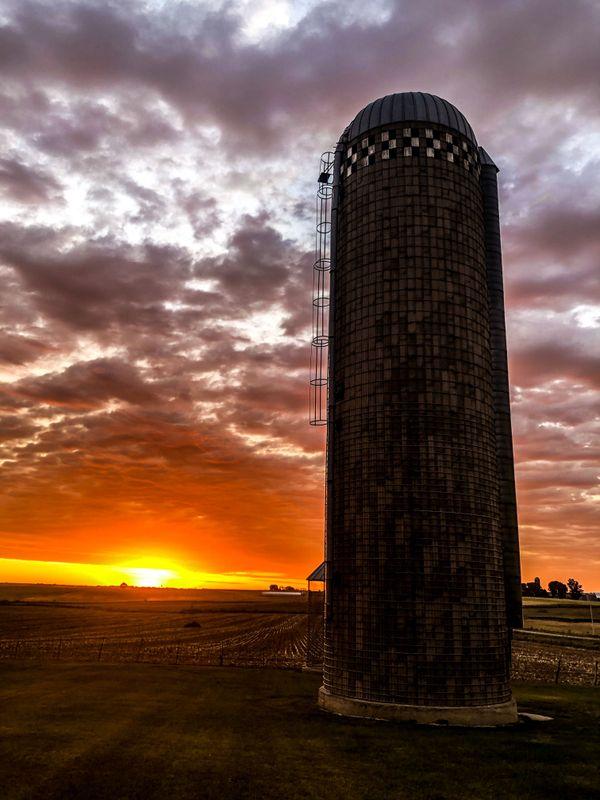 Sunrise on the farm thumbnail