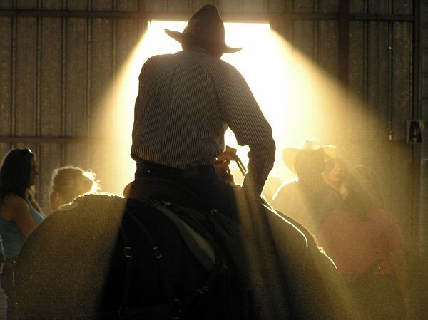 Cowboy atop his mule in the auction barn at the Hells Canyon Mule Days. thumbnail