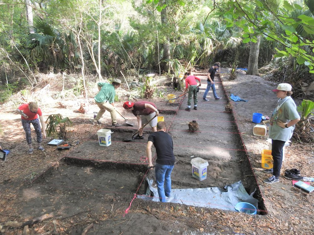 Archaeologists Inspect the Site