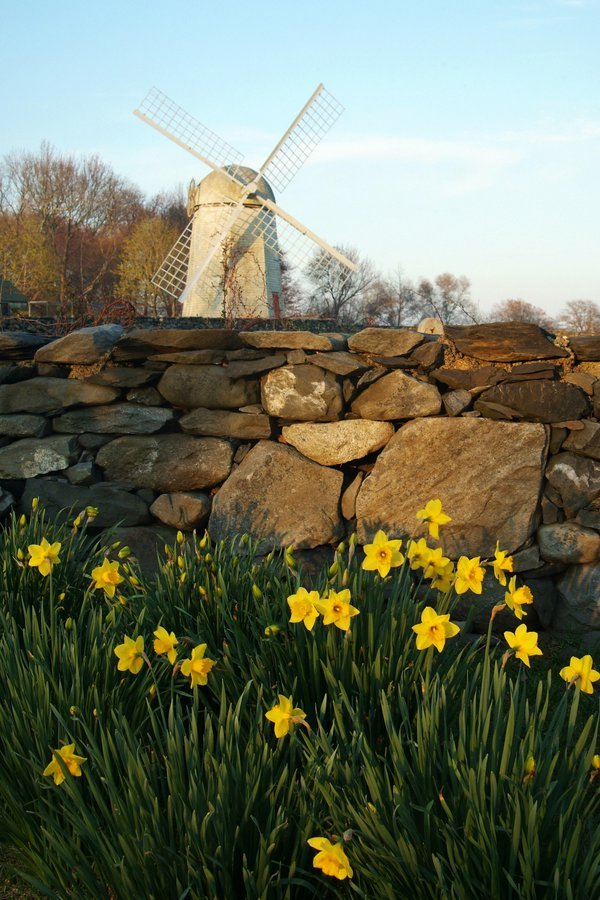 Jamestown Windmill thumbnail