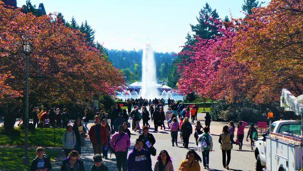Drumheller Fountain University of Washington thumbnail