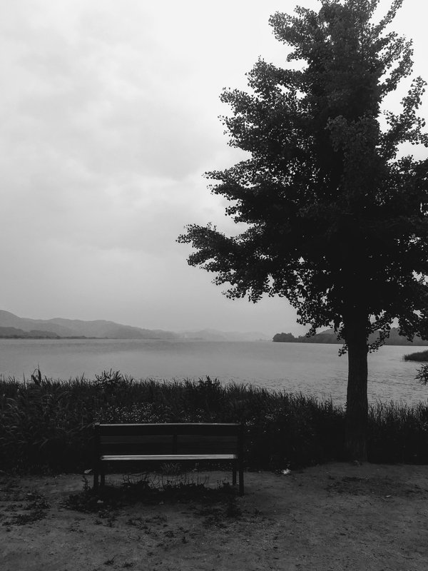 A lonesome bench thumbnail