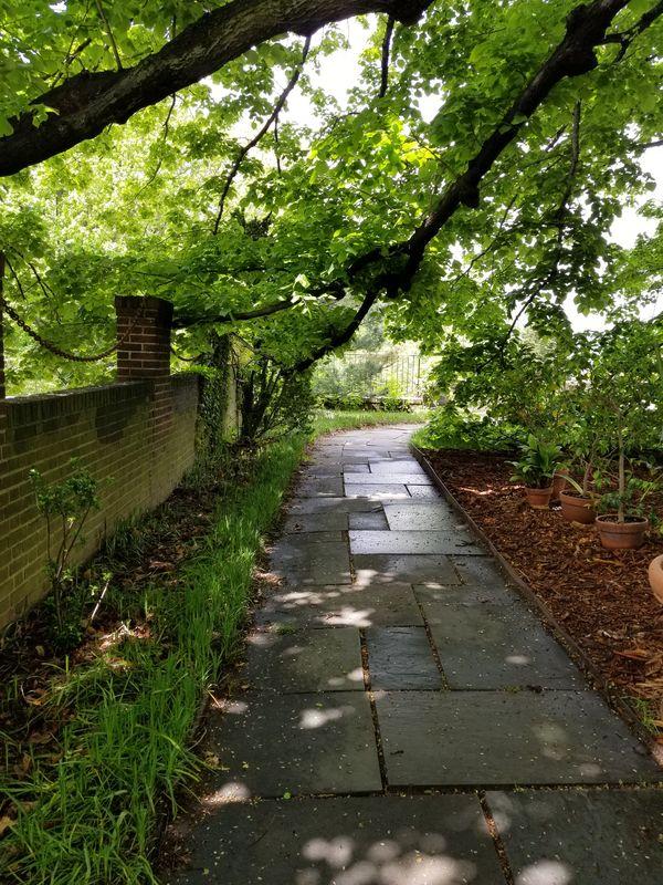 Walking path thumbnail