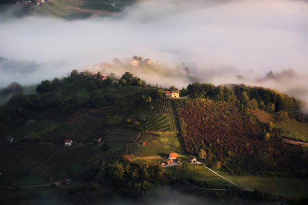 A shot of the southeastern Slovenian landscape at sunrise. You can see local vineyards and houses dotted on the rolling hills.