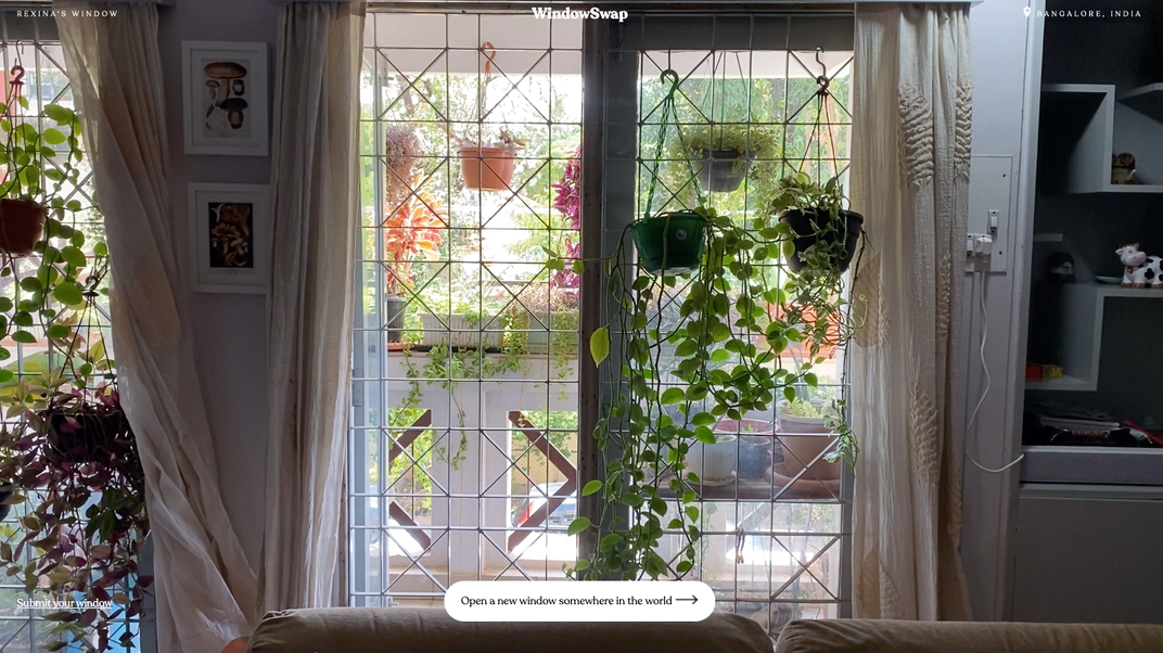 Plants hang from a window frame in Bangalore, India