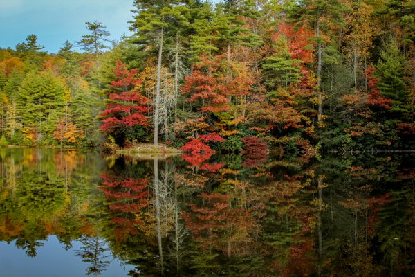Autumn reflections thumbnail