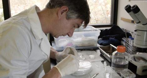 Dr. Pierre Comizzoli