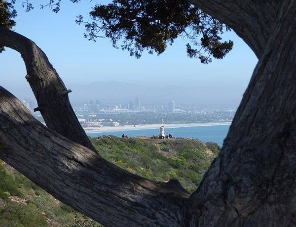 Cabrillo Monument seen through tree branches with San Diego in background thumbnail