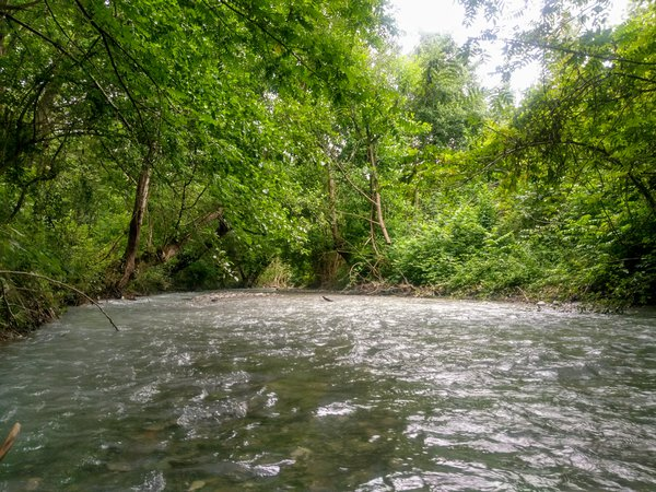 river thumbnail
