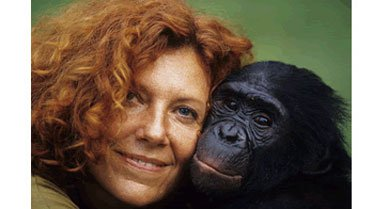 Claudine Andre, founder of Lola Ya Bonobo (Bonobo Paradise) sanctuary, rescues about ten of the endangered animals per year.