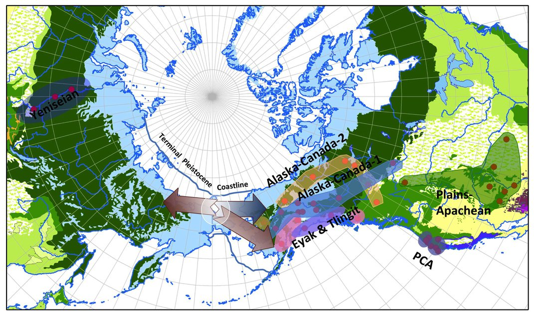 Ancient Migration Patterns to North America Are Hidden in Languages Spoken Today