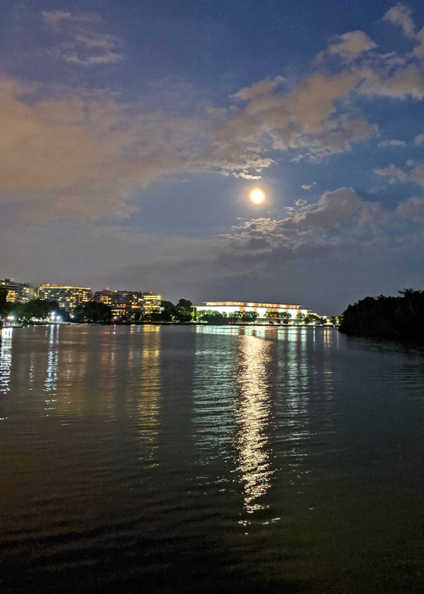 Kennedy Center in the Moonlight thumbnail