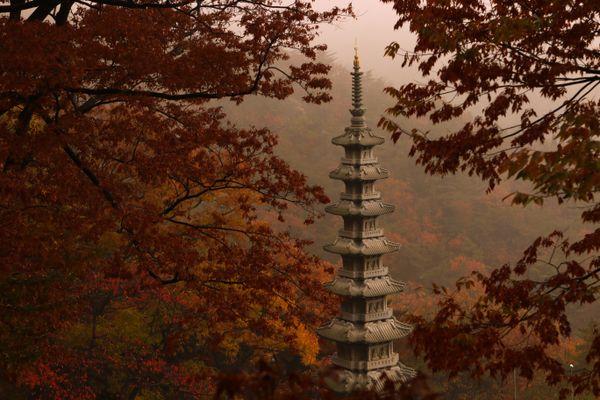 Hidden buddhist temple thumbnail