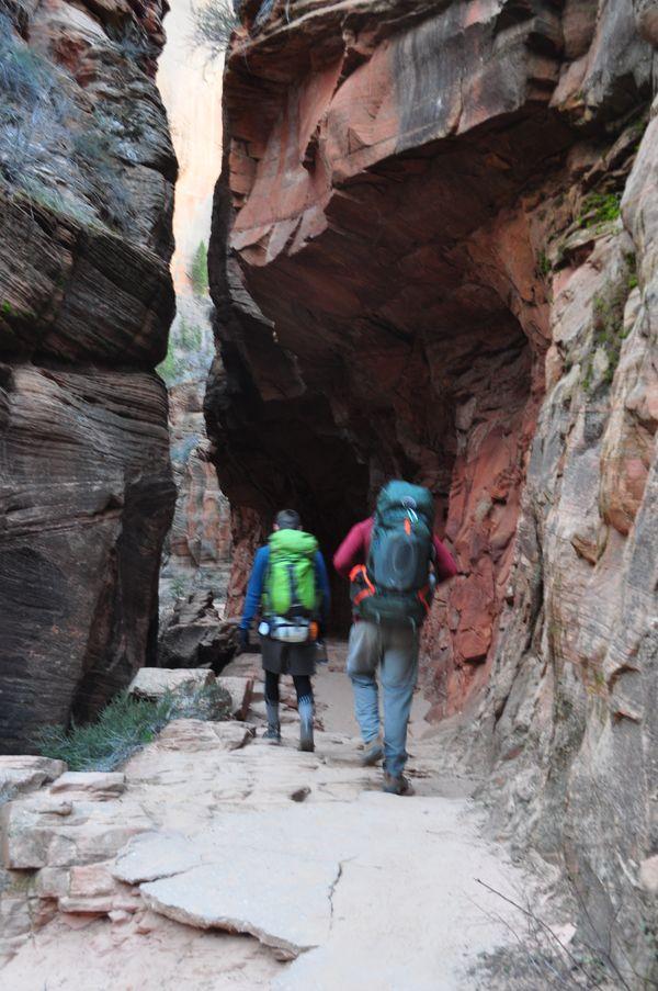 Into the Canyon thumbnail