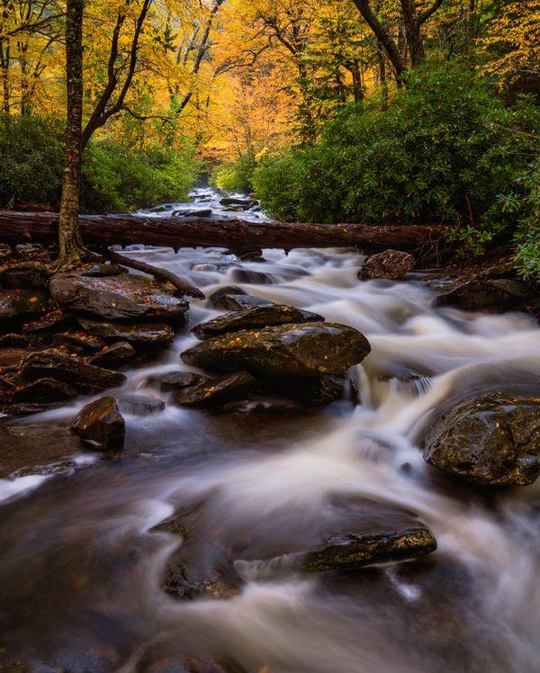 Autumn on Walker Camp Prong thumbnail