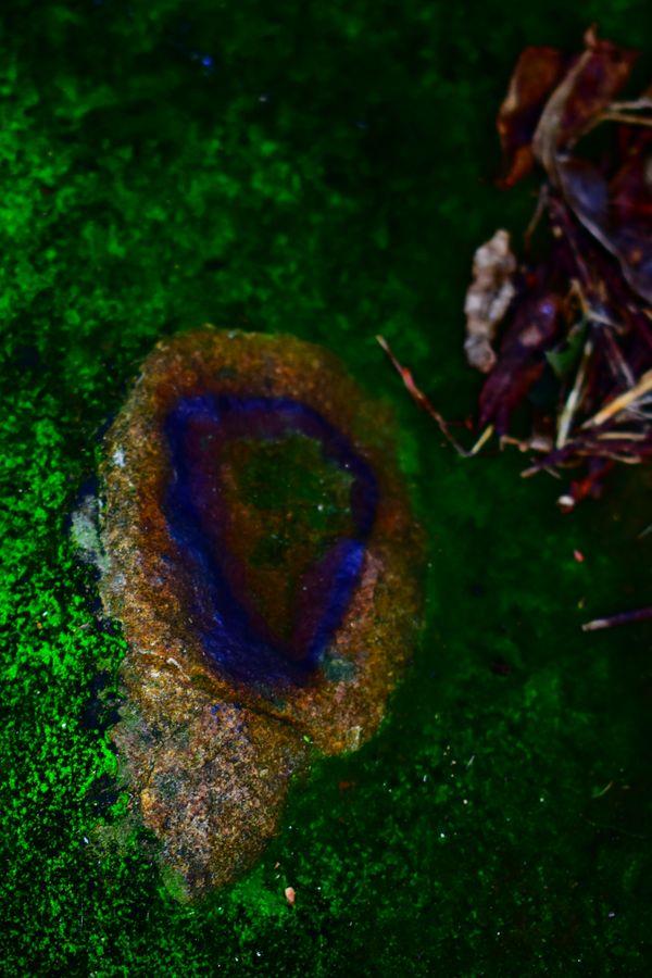 Geode Tree Stump thumbnail