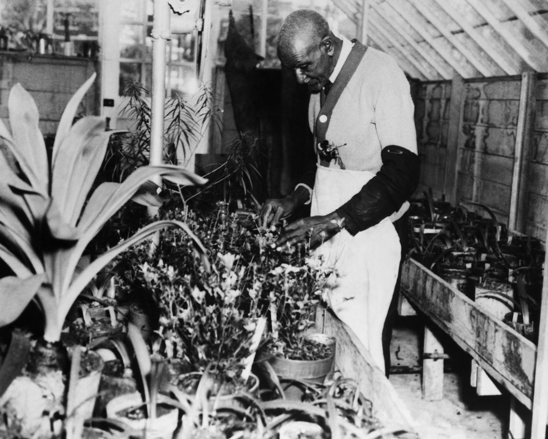 In Search of George Washington Carver's True Legacy