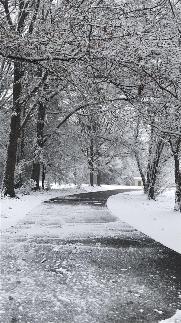 Snowy Wonderland thumbnail