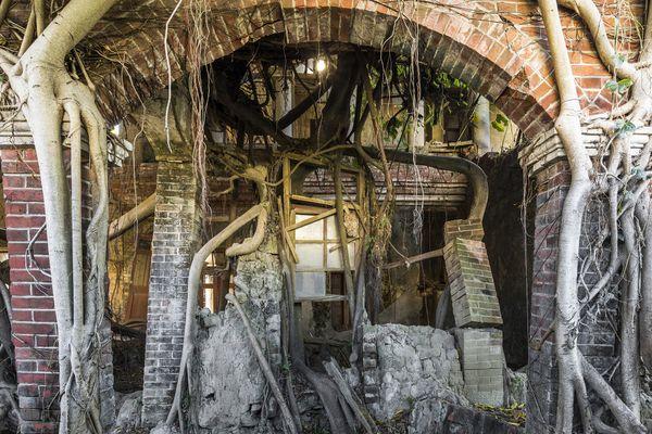 Abandoned Mansion, Taiwan, 2017 thumbnail