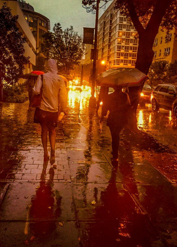 Walking in the rain thumbnail