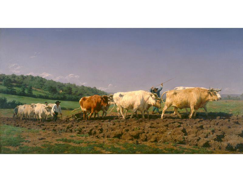 Rosa Bonheur, <em>Ploughing in the Nivernais</em>, 1849