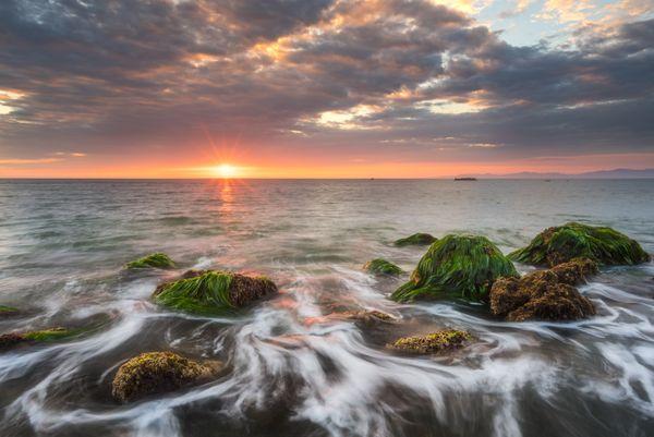 Seaflow thumbnail
