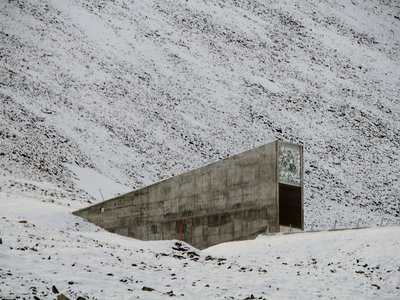 The Svalbard seed bank is one of many seed libraries in the world, and one of the best funded.