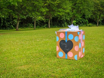 Some parents cut a cake, while others release pink or blue balloons from a box.