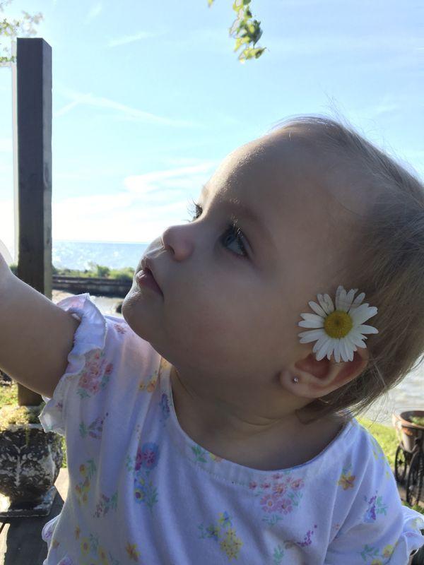Little flower girl thumbnail