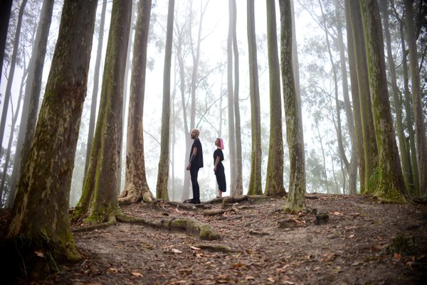 Symbiosis - couple and eucalyptus forest thumbnail