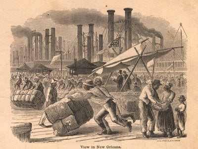 Illustration of the enslaved laborers moving cotton in New Orleans
