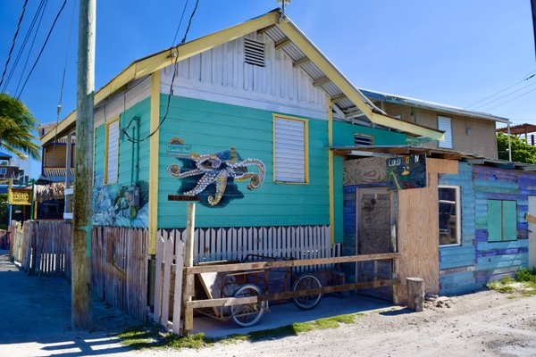 Colorful building on Caye Caulker thumbnail