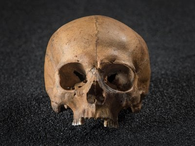 One skull found showed evidence of a gruesome, violent death