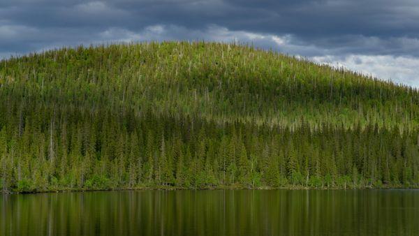 Green hill above the north lake thumbnail