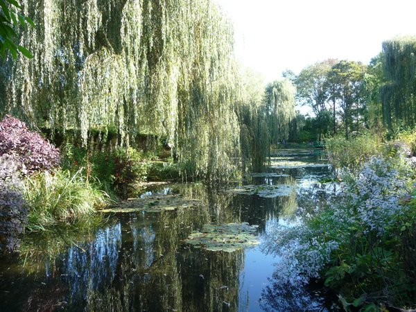Claude Monet's inspirational garden and pond thumbnail