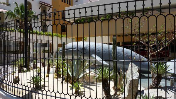 Whale in a garden thumbnail
