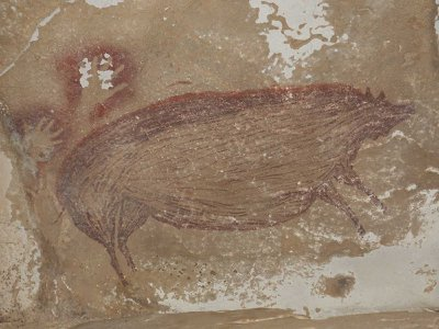 Scientists estimate this pig painting was drawn 45,500 years ago.