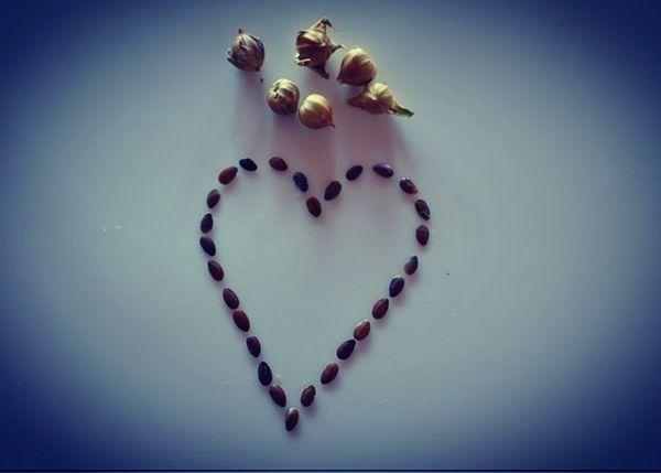 Flax Seed Heart thumbnail