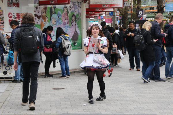 Akihabara district, Tokyo thumbnail
