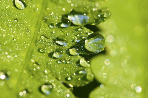 A drop of water thumbnail