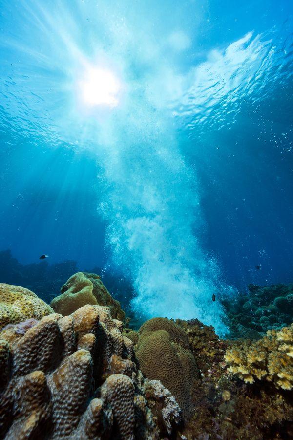 Underwater Volcanic Seep thumbnail