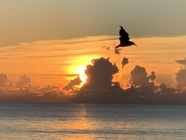 Sunrise on Miami Beach thumbnail