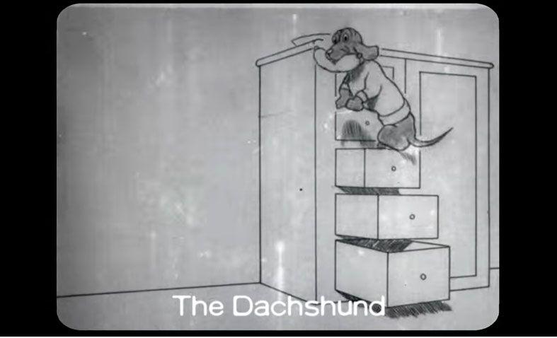 dachshund.PNG