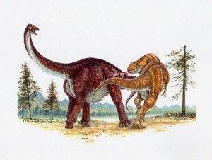 20110520083123tyrannosaurus-alamosaurus-skrepnick-painting-300x226.jpg