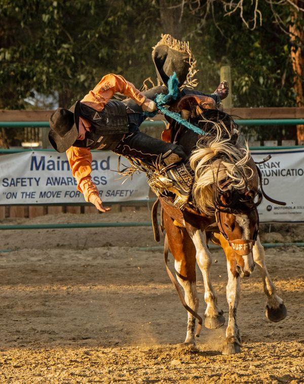 Flying Cowboy 3 thumbnail