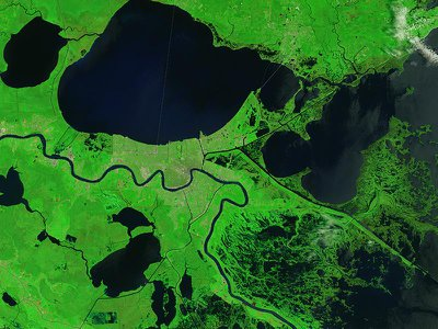 Ten years on, some of the scars that Katrina tore into coastal ecosystems persist, while others have healed. NASA's Landsat 8 satellite captured this image of the swamps and marshes that buffer New Orleans in August 2015.