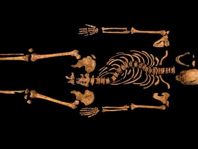 DNA from Richard III's bones revealed two instances of royal infidelity since the 14th century.