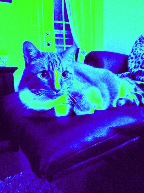 Blue Max thumbnail