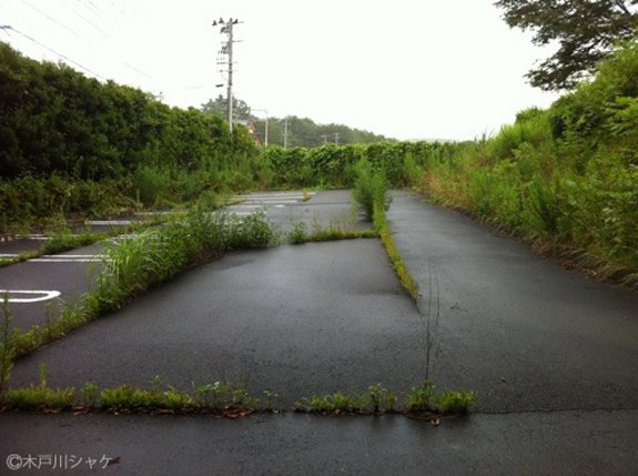 How The Fukushima Exclusion Zone Shows Us What Comes After The Anthropocene
