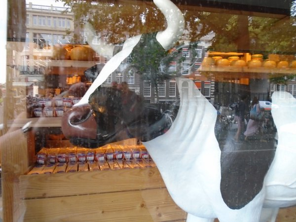Reflections in the widow of a cheese shop in Amsterdam, Netherlands thumbnail
